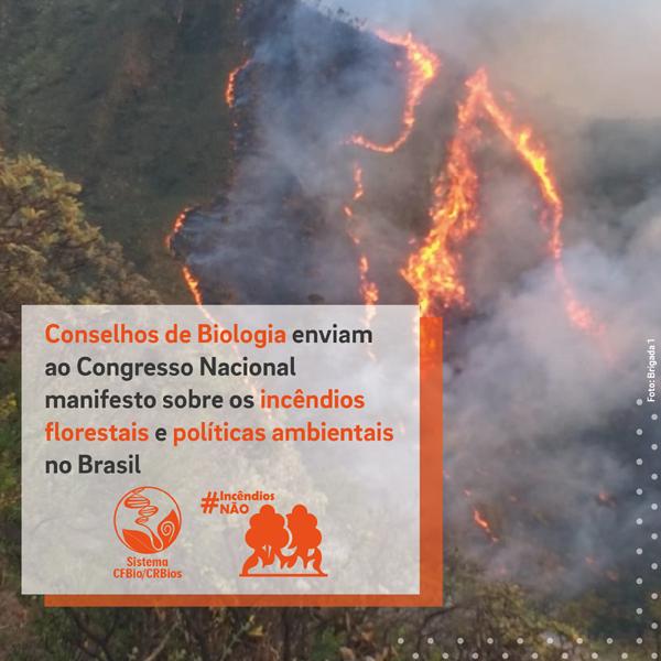 Conselhos de Biologia enviam ao Congresso Nacionalmanifesto sobre incêndios e políticas ambientais