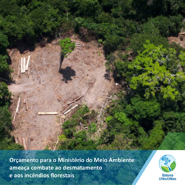 Orçamento para o Ministério do Meio Ambiente ameaça combate ao desmatamento e aos incêndios florestais