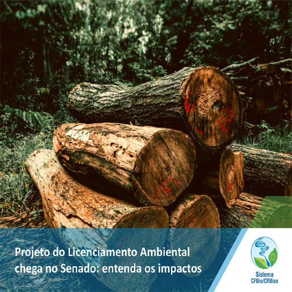 Projeto do Licenciamento Ambiental chega no Senado: entenda os impactos